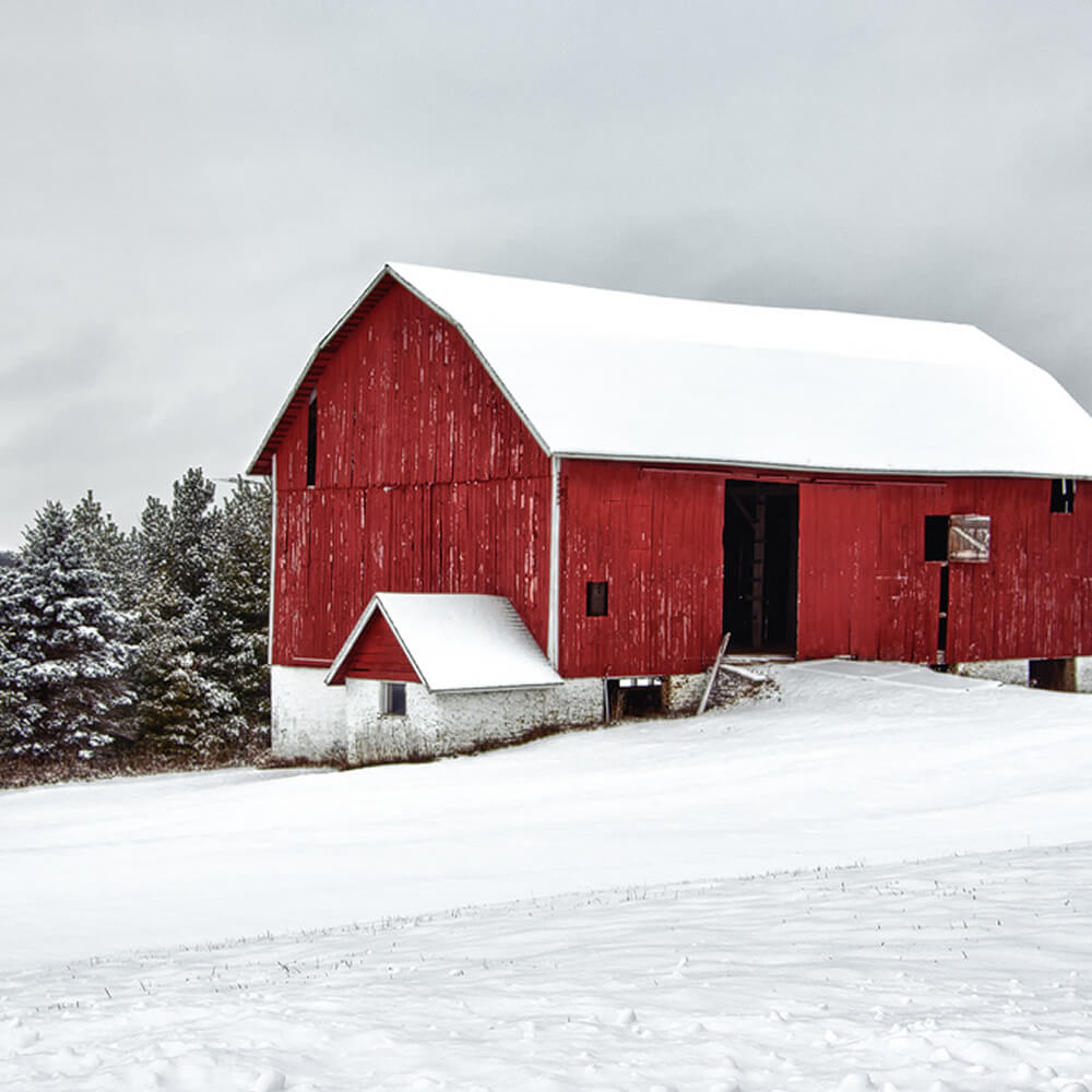 Barn covered in snow