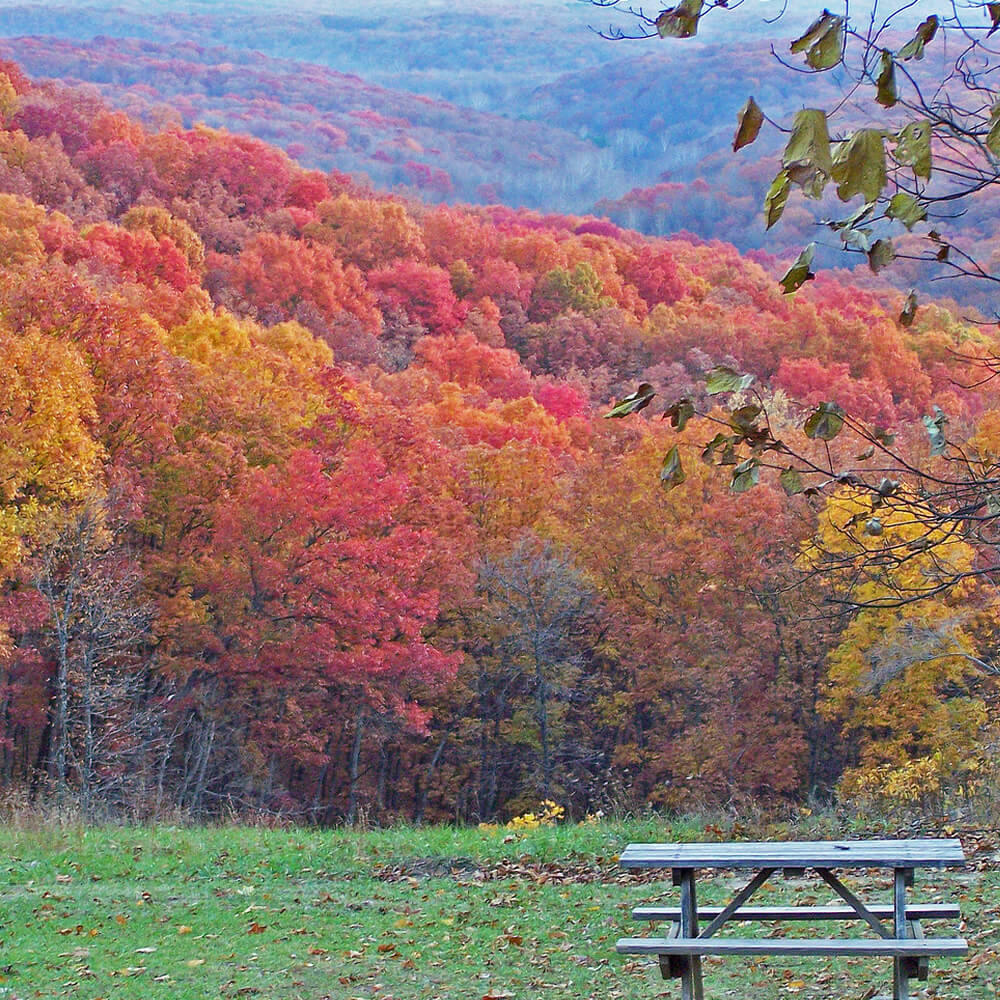 Picnic Table Aside Autumn Colors and Rolling Hills in Indiana