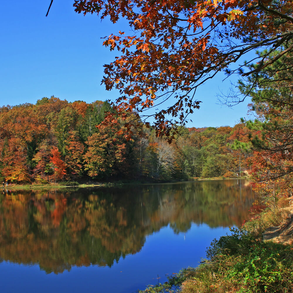 Indiana Lake and Trees at Fall Time